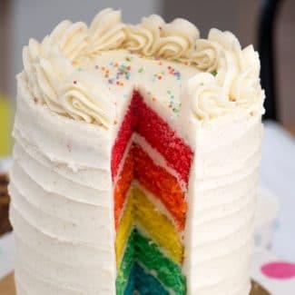 layercake-rainbowcake2